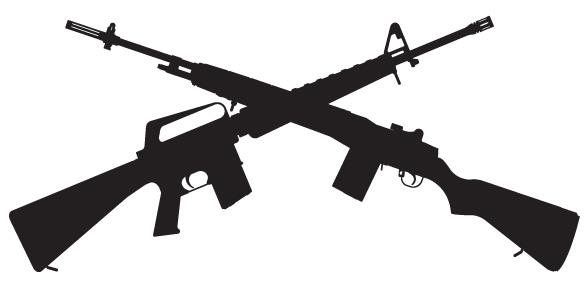 DMR / Sniper Rifle AEGs